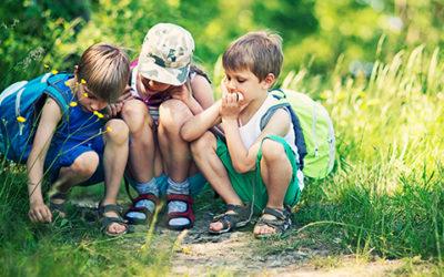 Strefa Dziecka – Mali podróżnicy