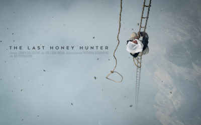 Last Honey Hunter